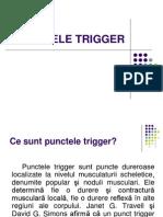 Trigger Point(2)