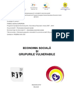 Economia Sociala Si Grupurile Vulnerabile Final Dec 2010