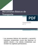 Mecanismos Básicos de Transporte