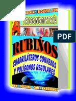 CUADRILÁTEROS CONVEXOS-POLIGONOS REGULARES