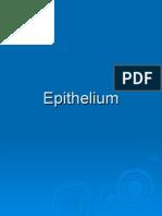 Epithelium Fall 2007 - 1