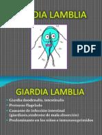 GIARDIA LAMBLIA goolria