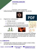 biossinalizao-090912182920-phpapp02