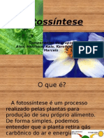 Fotossíntese(editado victor)