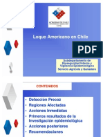 Loque en Chile
