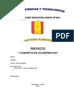 PROYECTO DE COSMETICOS
