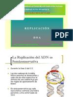 2 Replicación ADN [Modo de compatibilidad]