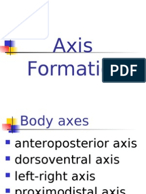 11 Axis Formation   Earth & Life Sciences   Life Sciences