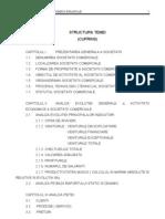 Analiza Echilibrului Economico-Financiar