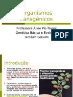 Organismos Transgênicos Ou OGM (Organismos Geneticamente Mod