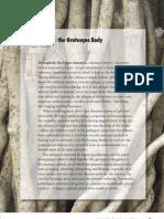 Ayahuasca and the Grotesque Body Stephan Beyer