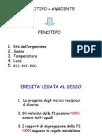 T_cromosomica_linkage-1 (Slaid Lezione Professoressa Priscilla Bettini Assistente Profess Ore Buiatti)