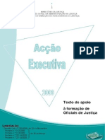 Acção executiva 2009