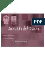 sentidodeltacto-101009131845-phpapp01