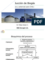 Produccion de Biogas - Felipe Kaiser