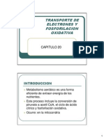 CAP20 Transporte de Electrones y Fosforilacion Oxidativa