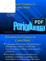 Cunha Distal Graduacao 2006