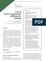 02.026 Hiperfunción de la corteza suprarrenal síndrome de Cushing