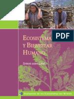 LIBRO Health Synth Ecosistemas y Bienestar