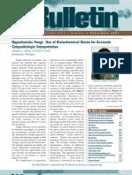 Opportunistic Fungi in Cytopathology