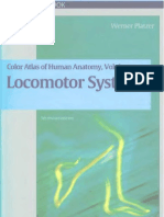 Locomotor Systems Anatomy Atlas