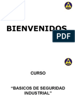 Curso de Seguridad Industrial.