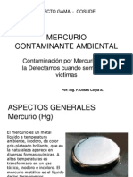 Mercurio_contaminante_ambiental