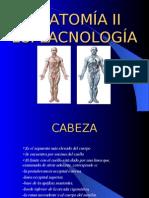 AnatomiaESP1
