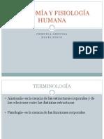 Presentación Planos anatómicos y fisiología de órganos principales