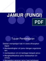 6. Jamur (Fungi)