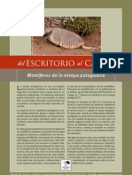 Mamiferos de La Estepa Patagonica