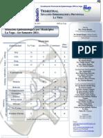Boletín Trimestral 1era Edición 2011