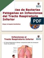 Tendencias en Patógenos Bacterianos en Infecciones del Tracto Respiratorio Inferior