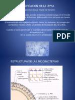 Clasificacion de La Lepra