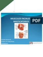 Presentacin-musculos Faciales y Masticatorios