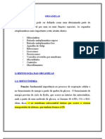 cap03_organelas