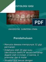 histologi gigi