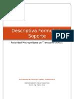 Descriptiva Formulario Soporte