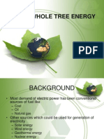Whole Tree Energy