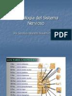 Semiología del Sistema Nervioso