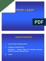 Work Program and Budget