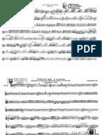 01- flautin