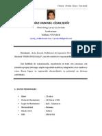 Curriculun Vitae Cesardiaz07072011