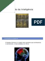 inteligencia_AE_11
