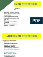 LABERINTO POSTERIORcomision
