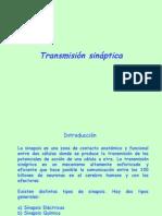 06TransmisionSinaptica04