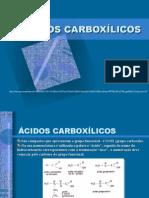 6-Ácidos Carboxílicos