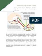 2.2_Lengs_del_lado_servidor_o_cliente