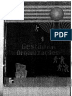 Gestão das organizações - Sebastião Teixeira