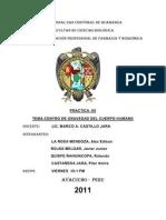 UNIVERSIDAD NACIONAL SAN CRISTÓBAL DE HUAMANGA
